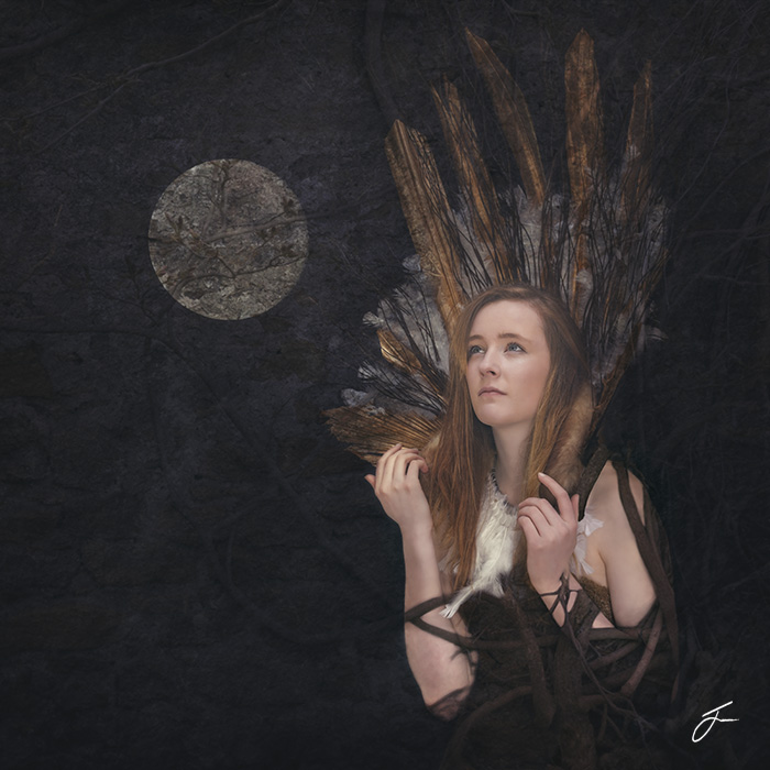 Julie Corcoran Luna Bound